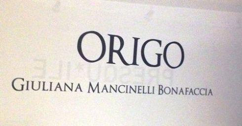 origo 1