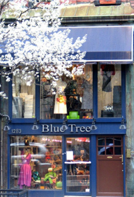 The New York concept store Blue Tree