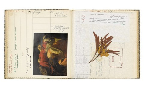 Documents, scripts concerning Caravaggio and pressed flowers by Derek Jarman