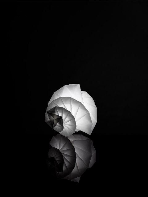 "IN- EI ISSEY MIYAKE ""MENDORI""(2012), photo by Hiroshi Iwasaki"