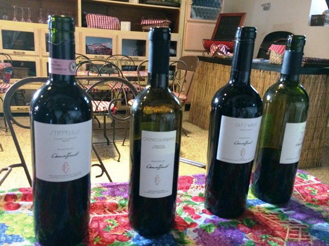 The red wines selected by Anna Venturini Fendi