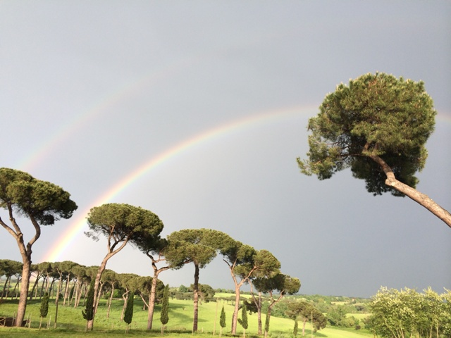 Two rainbows are better than one at Floracult, photo by N