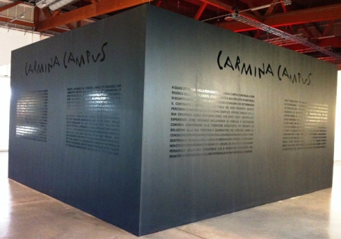 The installation by Maria Luisa Frisa and Carlo Alberto D' Emilio featuring Carmina Campus, photo by Elisabetta Facco
