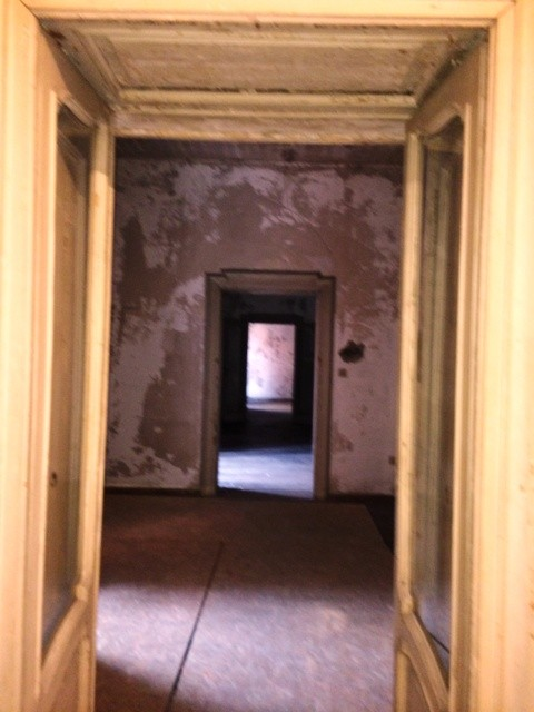 Ladies & Gentlemen...The Doors, photo by N