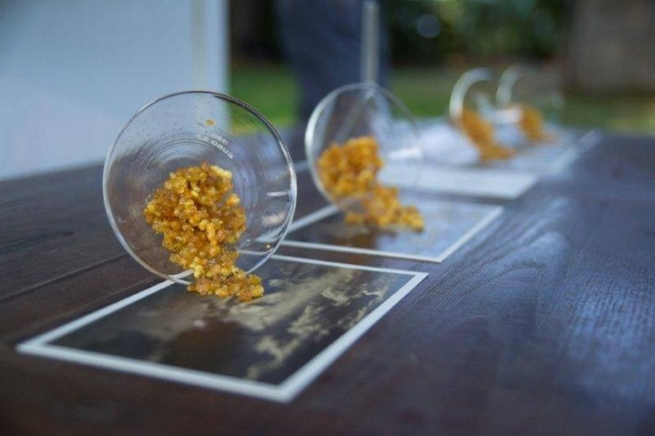 installation by Meo Fusciuni, photo courtesy Meo Fusciuni