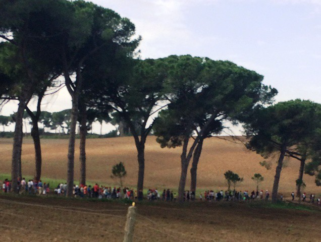 People going to sow, photo by N