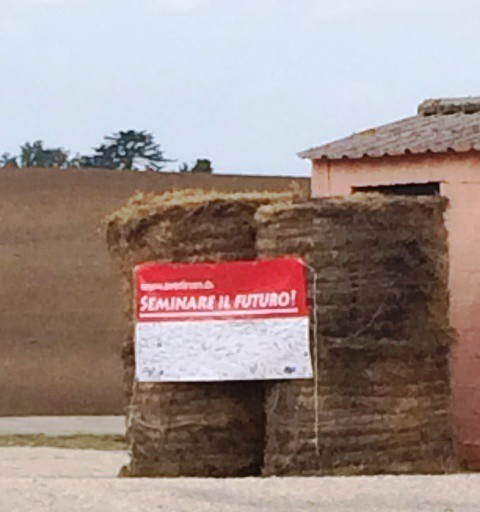 Seminare il futuro at the Casali del Pino, photo by N