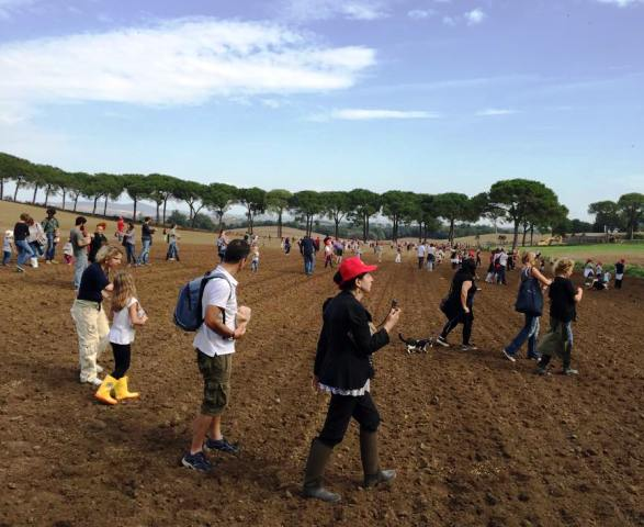 Me, myself & I  along with the people sowing, photo by Enea Roveda