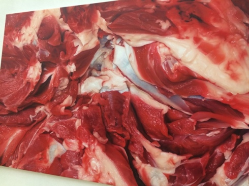Marc Quinn, Flesh painting( on sensualism), 2012, private collection, photo by N