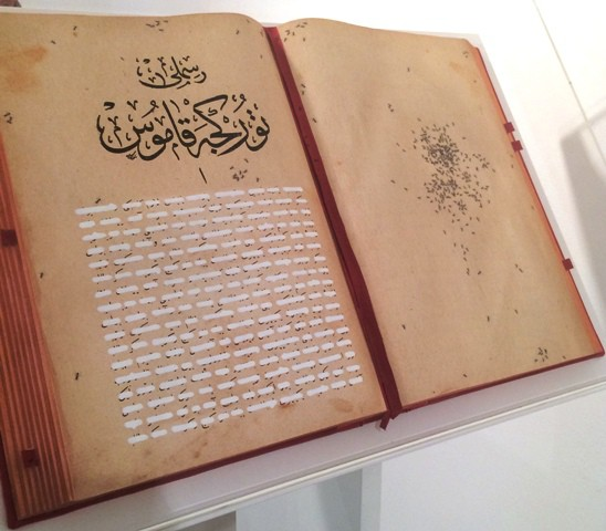 Emilio Isgrò, The Ottoman Code of Loneliness, photo by N